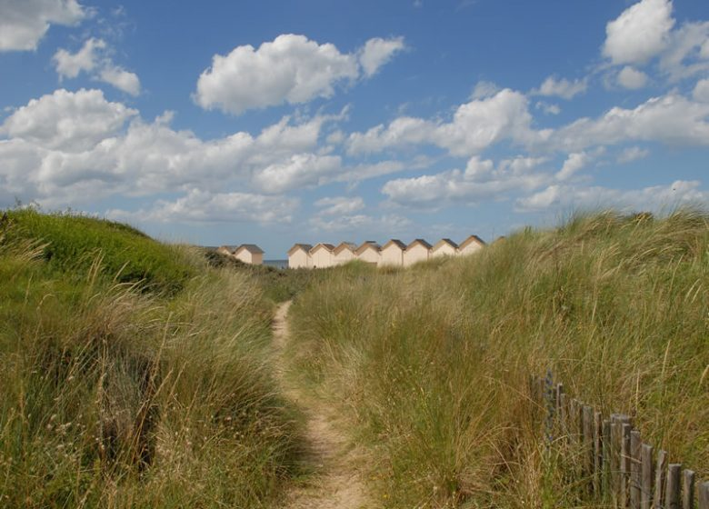 Ouistreham Cabines de plages dans les dunes